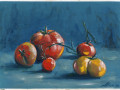 tomatoes on a blue background s
